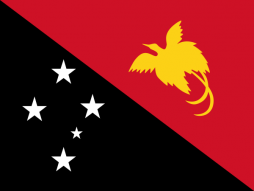 National Flag Of Papua New Guinea.png